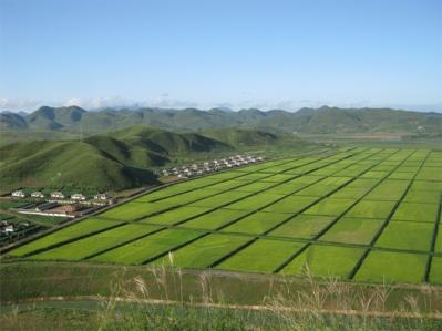 150428 - SK - Die völlige Abschaffung der Naturalsteuer in der Landwirtschaft - 02