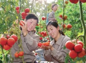 150728 - SK - Koreanische Frauen im glücklichen Leben - 10